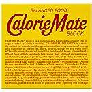 大塚製薬 カロリーメイト ブロック チョコレート 4本×30個