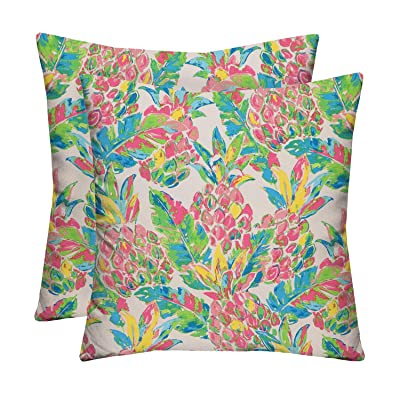 """RSH Décor Indoor Outdoor Multi Color Prints - 2 Square Pillows Weather Resistant - Choose Color & Size (Vida Garden Pink Yellow Green Lilly Pineapple, 17""""x17""""): Home & Kitchen"""