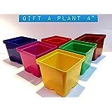 Malhotra Plastic 110022 Plastic Gift Pot Set (Multicolored, 8-Pieces)