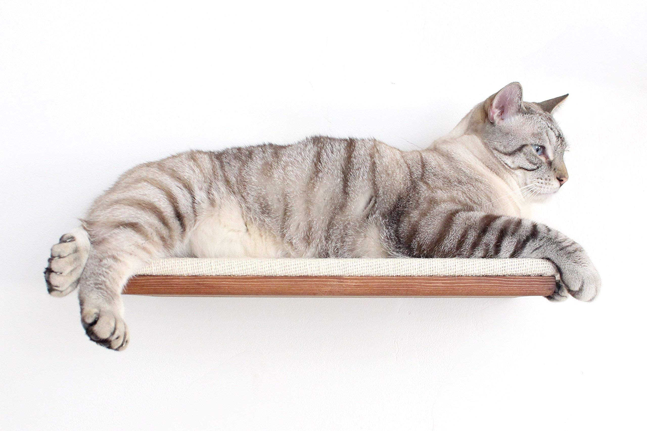 CatastrophiCreations 18'' Shelf with Burlap Fabric - Handcrafted Wall-mounted Cat Furniture