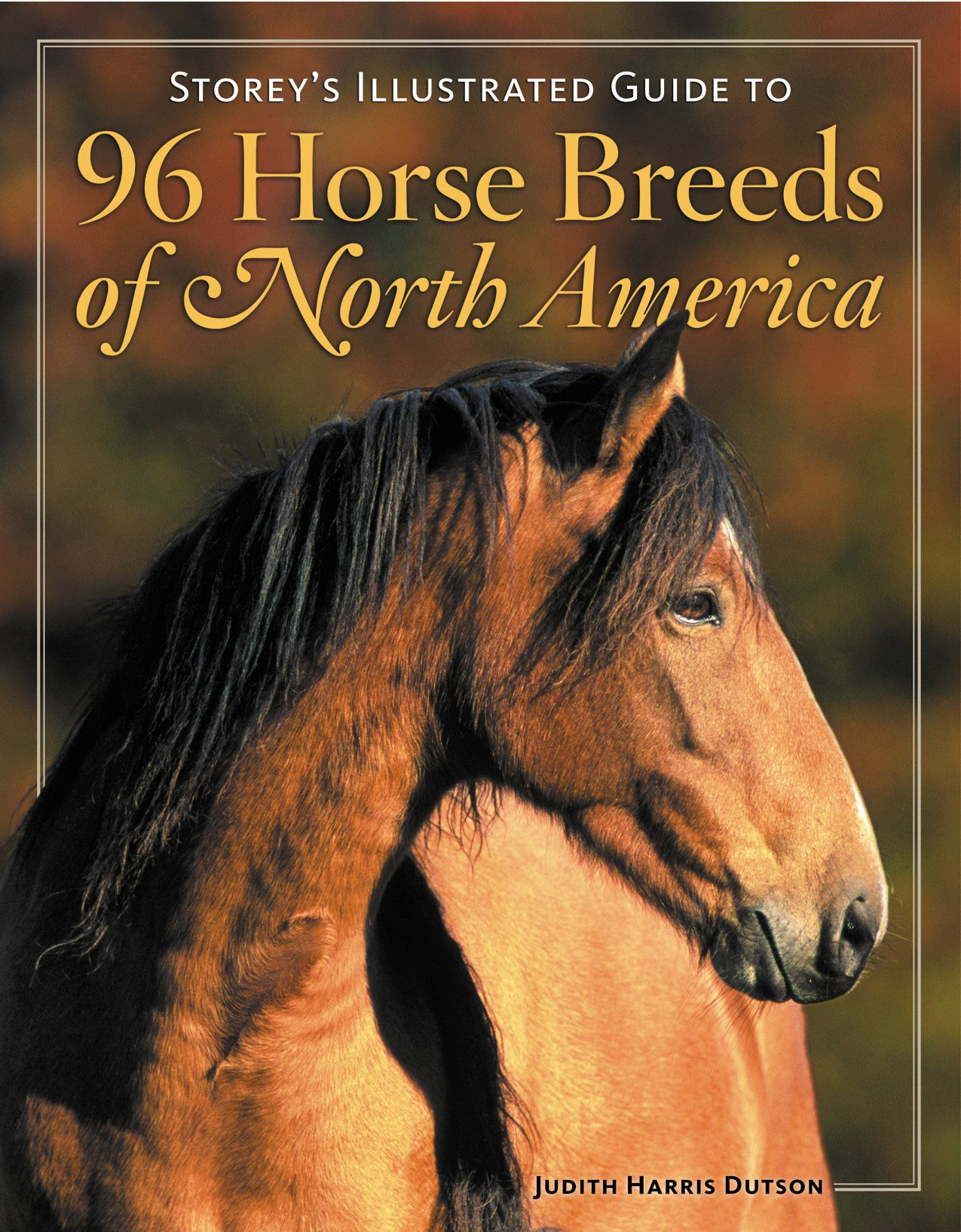 Amazon Storey s Illustrated Guide to 96 Horse Breeds of North