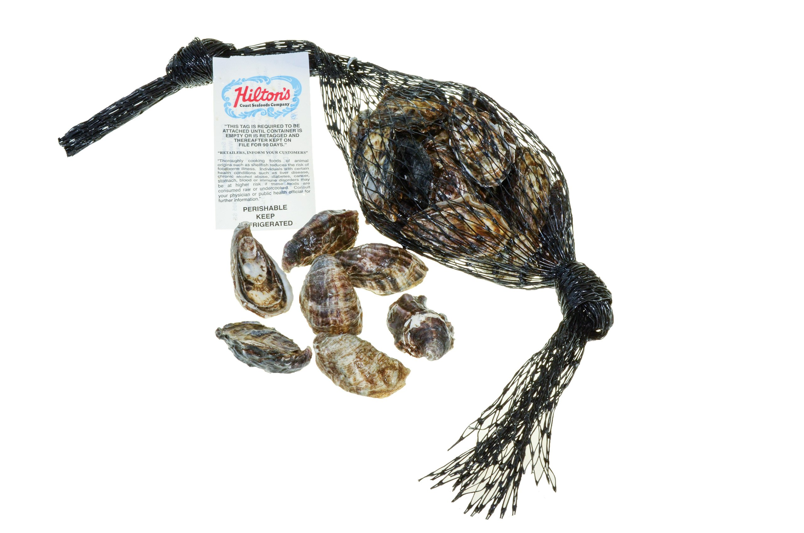 Oyster Amethyst In Shell Fresh, 4 Dz 48 Count