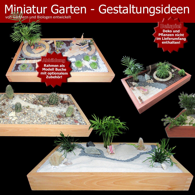 Miniaturgarten Zimmergarten Kleine Mobile Gartenanlage Der