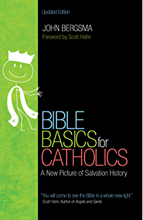 The bible blueprint a catholics guide to understanding and bible basics for catholics a new picture of salvation history malvernweather Choice Image
