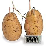 Make Your Own Potato Clock