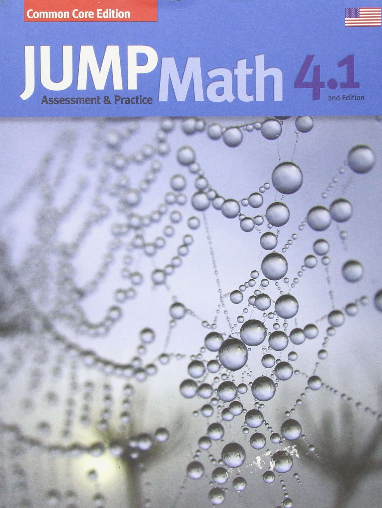 Amazon.com: JUMP Math AP Book 4.1: US Common Core Edition, Revised ...