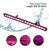 Roleadro Led Grow Lampe 54W Led Light Bar de Culture Croissance et Floraison Imperméable IP65 55cm Rouge Bleu