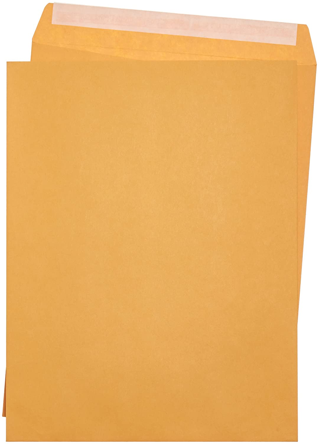 AmazonBasics Catalog Envelopes, Peel & Seal, 10 x 13 Inch, Brown Kraft, 250-Pack