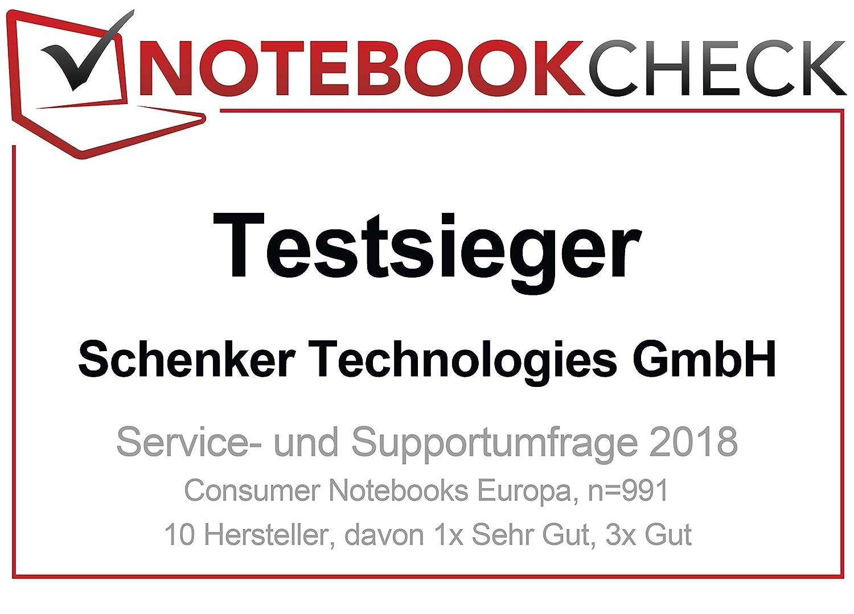 SCHENKER KEY 15 - L17bky Laptop Schwarz: Amazon.de: Computer & Zubehör