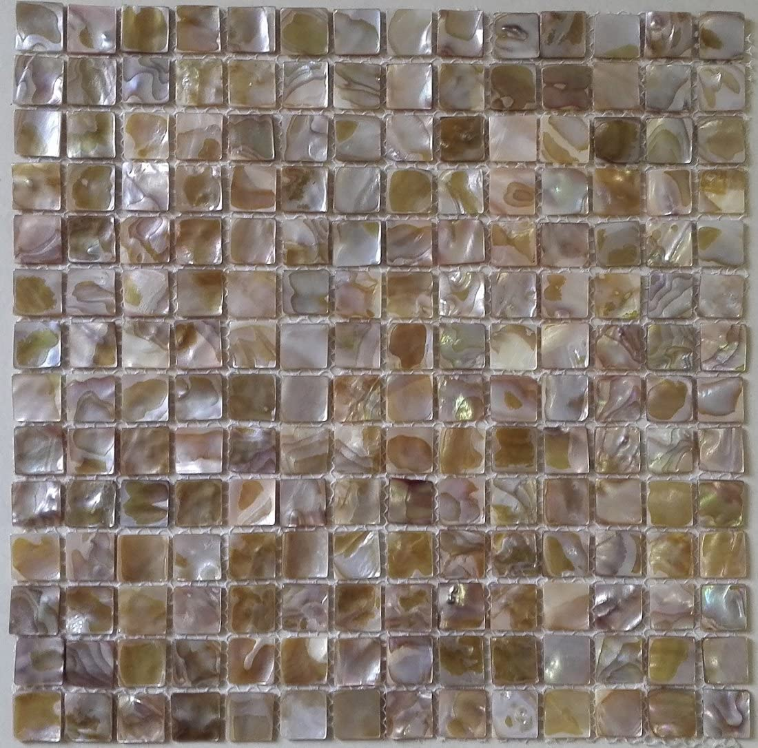- Amazon.com: 11PCS Natural Colorful Square Mother Of Pearl Shell