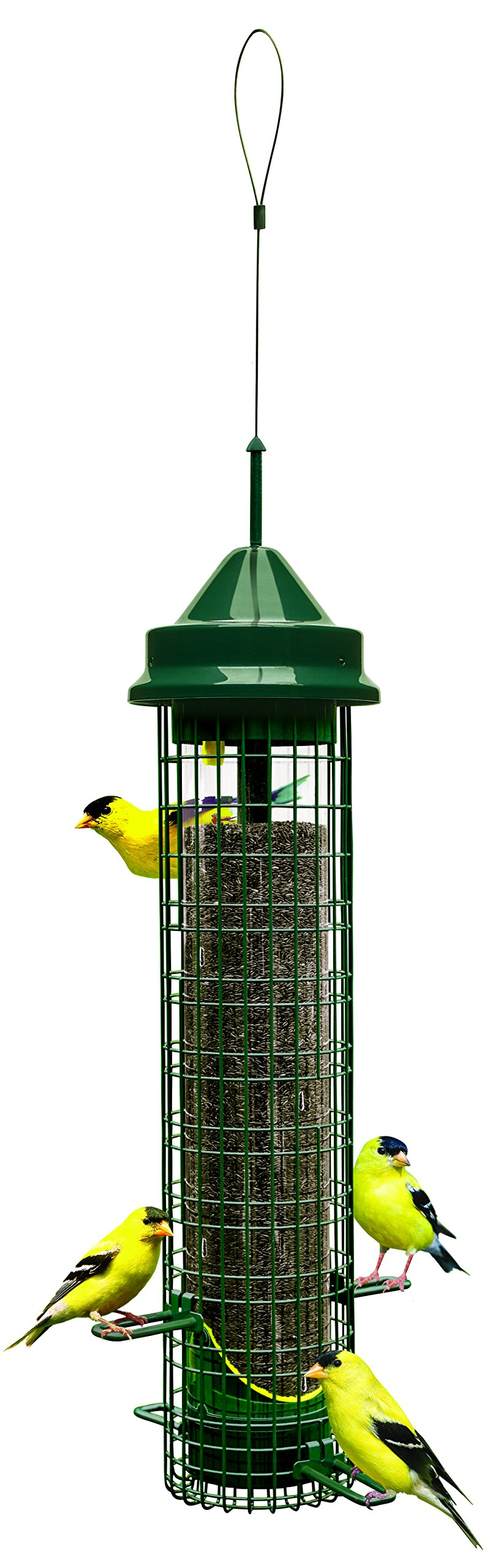 Squirrel Buster Finch 5.3''x5.3''x32'' (w/hanger) Wild Bird Feeder with 4 Metal Perches and 8 Feeding Ports, 2.4lb Thistle/Nijer Seed Capacity