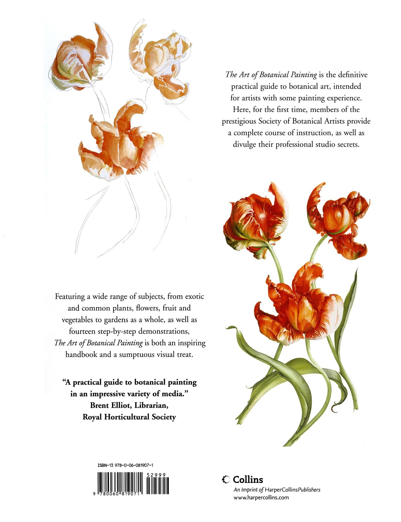 The Art Of Botanical Painting Margaret Stevens 9780060819071 Books