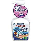 パーシャルデント洗浄フォーム 部分入れ歯用 ミントの香り 250ml ポンプタイプ