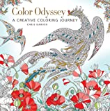 Color Odyssey: A Creative Journey (Colouring Books)