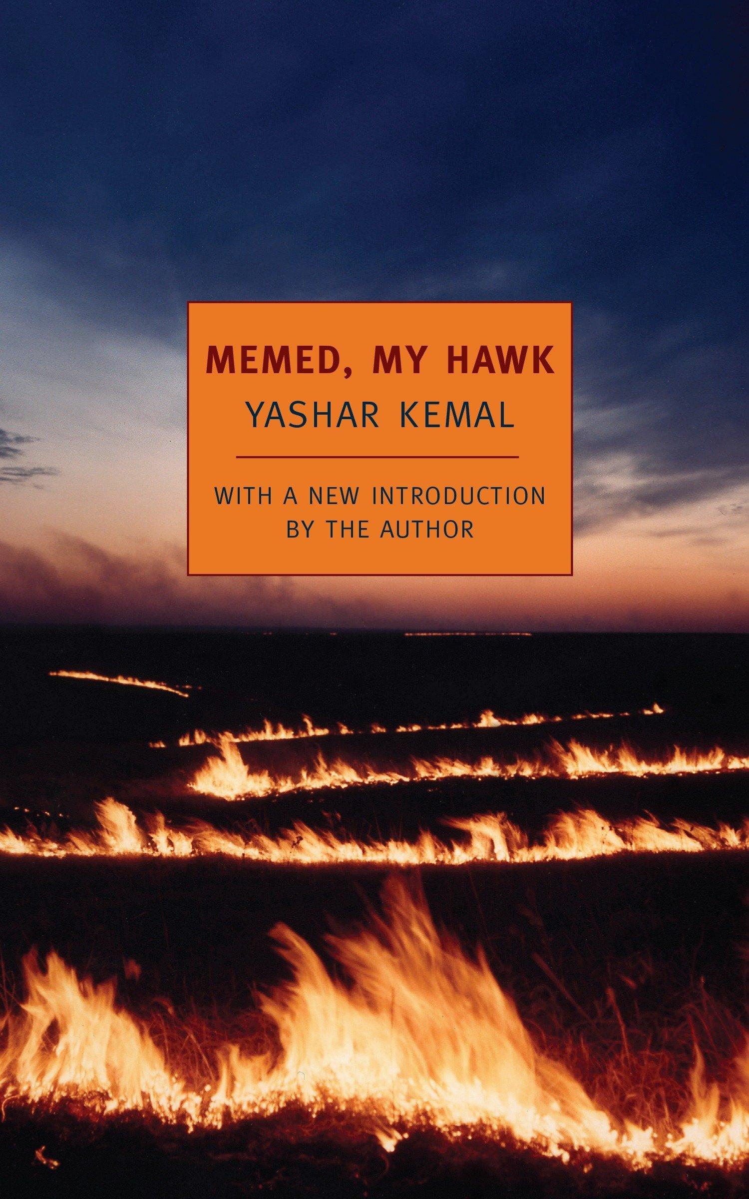 Download Memed, My Hawk pdf