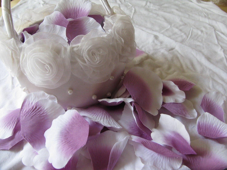 Matrimonio Compleanno Festa party Petali di Rosa VIOLA Purple Pack 288pz