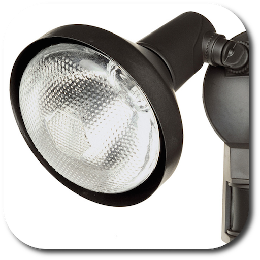 Motion Detector Light / Motion Activated Light / Security Light