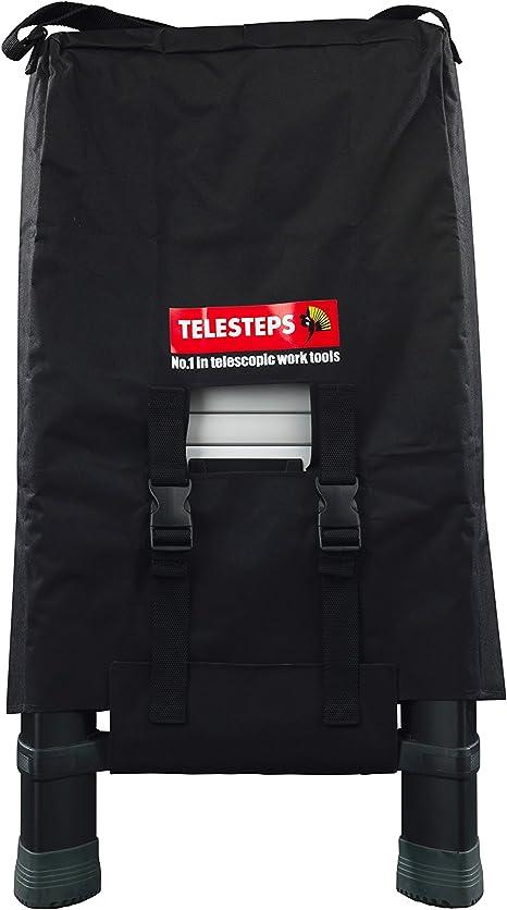 Telesteps Classico Line appentis /Échelle noir 9193-101 Argent