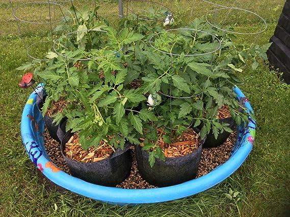 Bolsa de raíz Bolsas de cultivo, 5 L, con asa 3 - 4 año, juego de 10: Amazon.es: Jardín