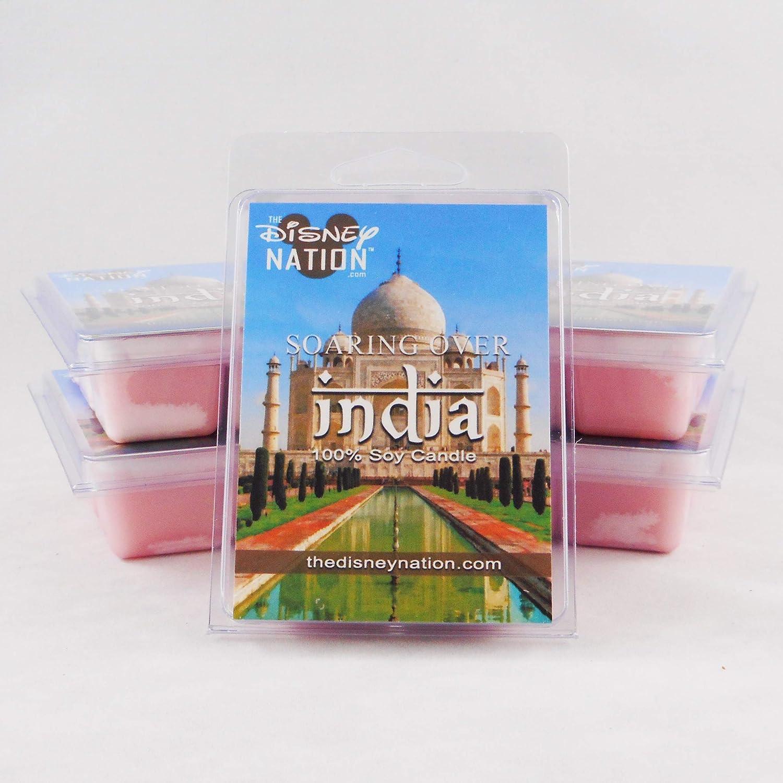 Disney Scented in 100/% Soy Wax Melts Taj Mahal India SOARIN WORLD SERIES Wax Melts