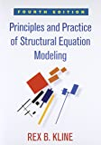 Principles and Practice of Structural Equation Modeling (Methodology in the Social Sciences)