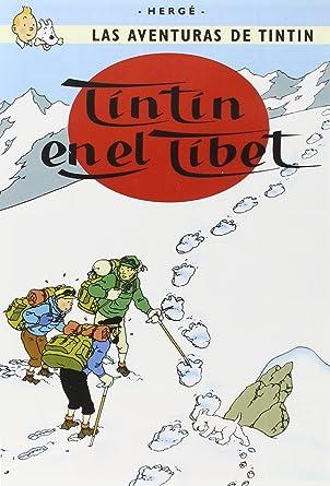 Tintin En El Tibet [DVD]: Amazon.es: Animación, Stéphane ...