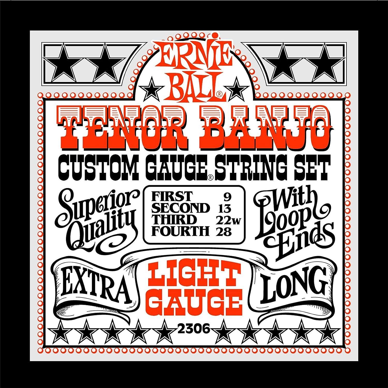 Ernie Ball 5-string Banjo Medium Stainless Steel Loop End Set, .010 - .024w P02309