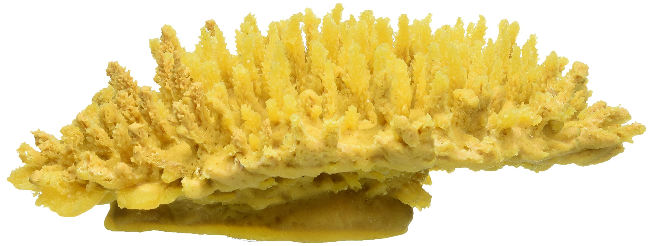 Deep Blue Professional ADB80103 Table Coral for Aquarium, 13.5 by 5 by 10-Inch, Yellow