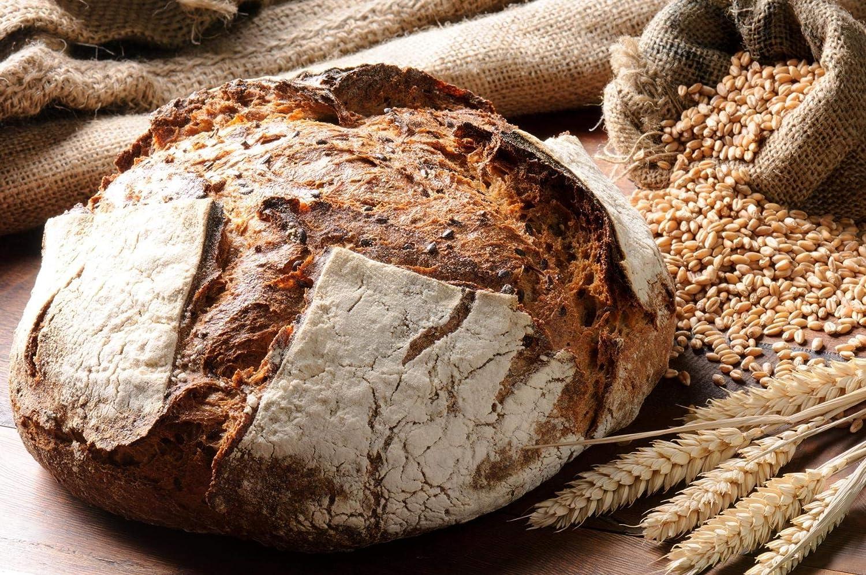 Levadura fresca biológica - Masa madre de harina de centeno ...