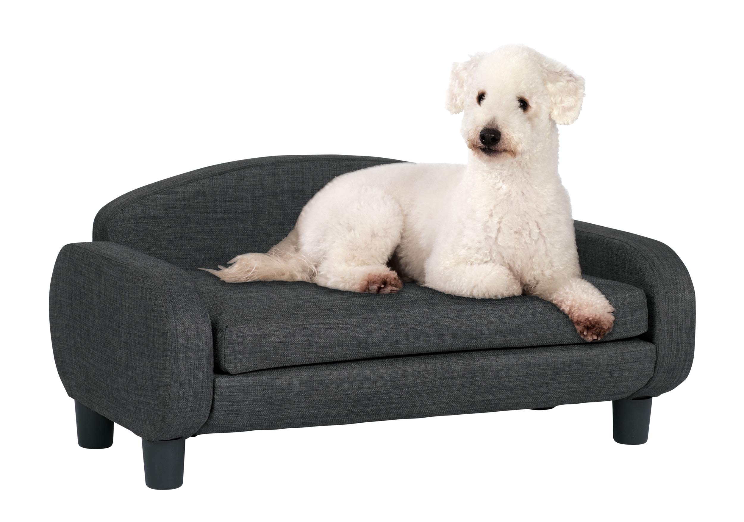 Paws & Purrs Modern Pet Sofa 31.5'' Wide by 19.5'' Deep Low Back Lounging Bed with Removable Mattress Cover in Gray by Paws & Purrs