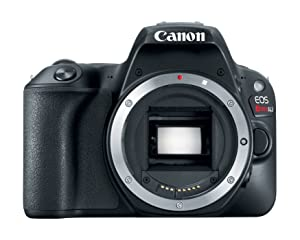 Canon EOS 200D Body DSLR Cameras at amazon