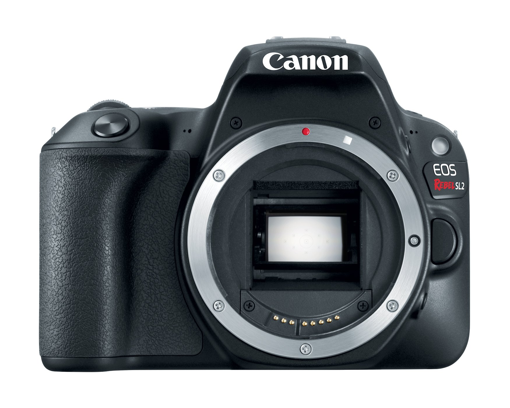 Canon EOS Rebel SL2 Digital SLR Camera Body - WiFi Enabled by Canon (Image #1)