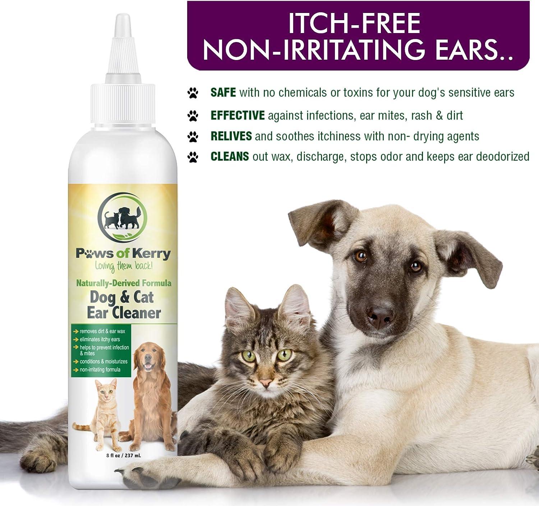 Amazon.com: Dog & Cat Ear Infección Tratamiento para pica ...