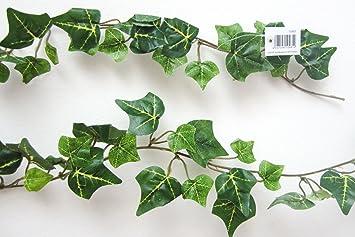 Amazonde Unbekannt Efeugirlande Grün Efeu Ca 160 Cm