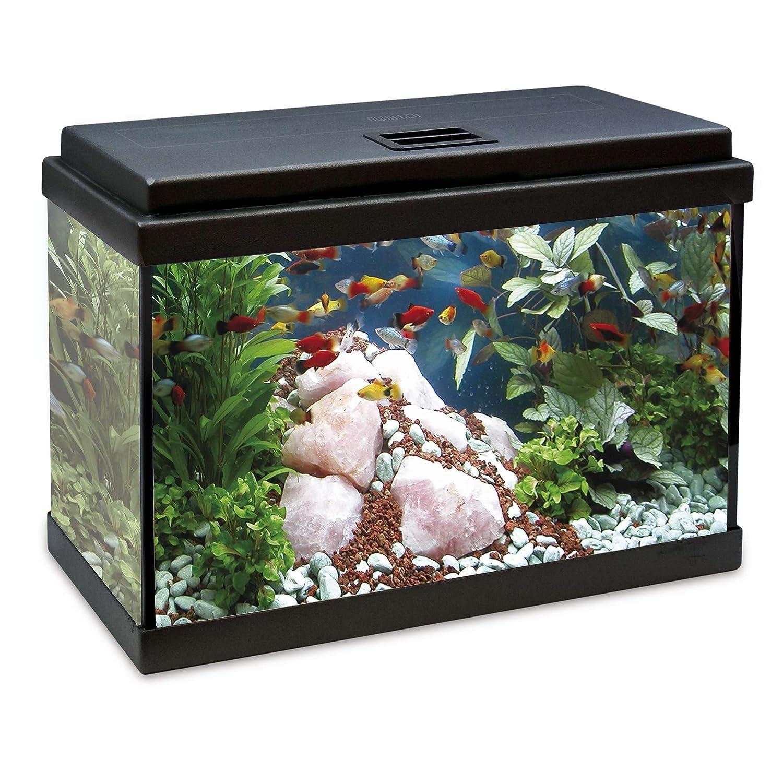ICA KDB33 Kit Interior Aqualed con Filtro Biopower, Negro: Amazon.es: Productos para mascotas