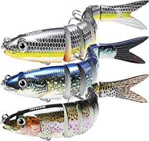 TRUSCEND Fishing Lures