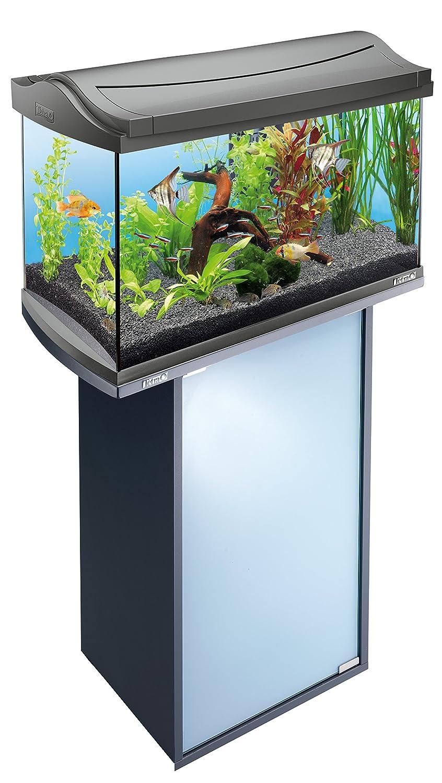 Tetra Armario bajo AquaArt para acuarios de 60L 60 L anthr.: Amazon.es: Productos para mascotas