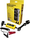 AA Battery Charger & Maintainer, For 6V & 12V Lead Acid and Gel Batteries
