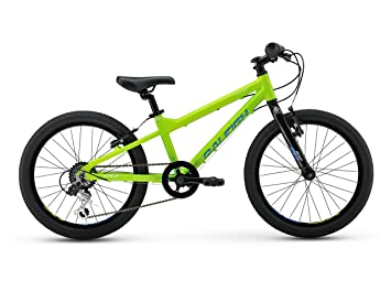 Raleigh Bikes Kids Rowdy 20 Mountain Bike One Size
