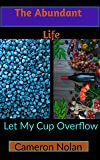 THE ABUNDANT LIFE: Let My Cup Overflow