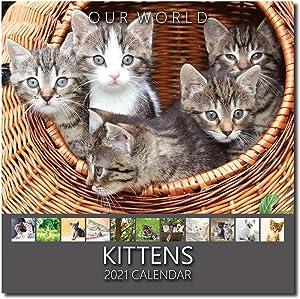Our World: Kittens 2021 Kitten Wall Calendar. Cute Cat Calendar