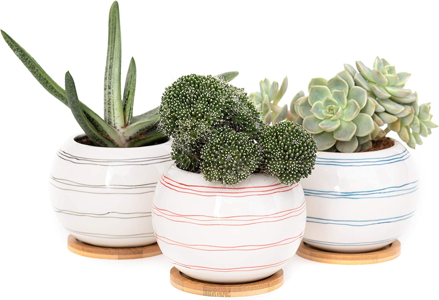 Planter Succulent Pot with Drainage Hole 3.25 Stoneware Korean Style Hand Crafted and Hand Painted Coarse Pottery