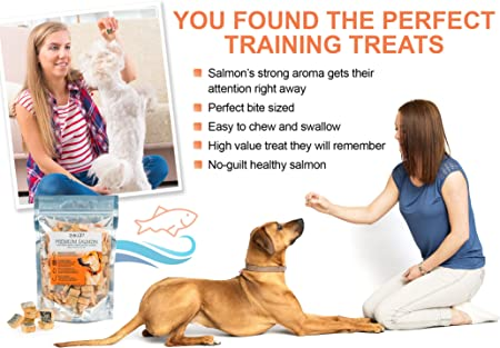 best-dog-food-for-boxers-with-sensitive-stomachs