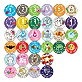 Amazon Price History for:Ronica Baby Monthly Stickers- Record Growth and Other Milestones, Set of 32
