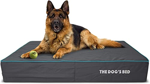 The Dog s Bed Orthopedic Dog Bed, Premium Memory Foam S-XXXL, Waterproof, Dog Pain Relief for Arthritis, Hip Elbow Dysplasia, Post Surgery, Lameness, Senior Supportive, Calming Bed, Washable Cover