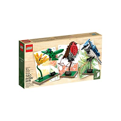 LEGO Ideas 21301 Birds Model Kit(Discontinued by manufacturer): Toys & Games