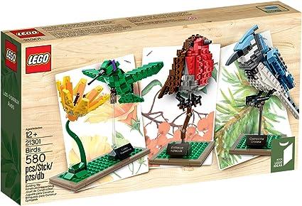 Garden Birds Kit Two Card Kit Nature Wildlife Craft Educational Gift