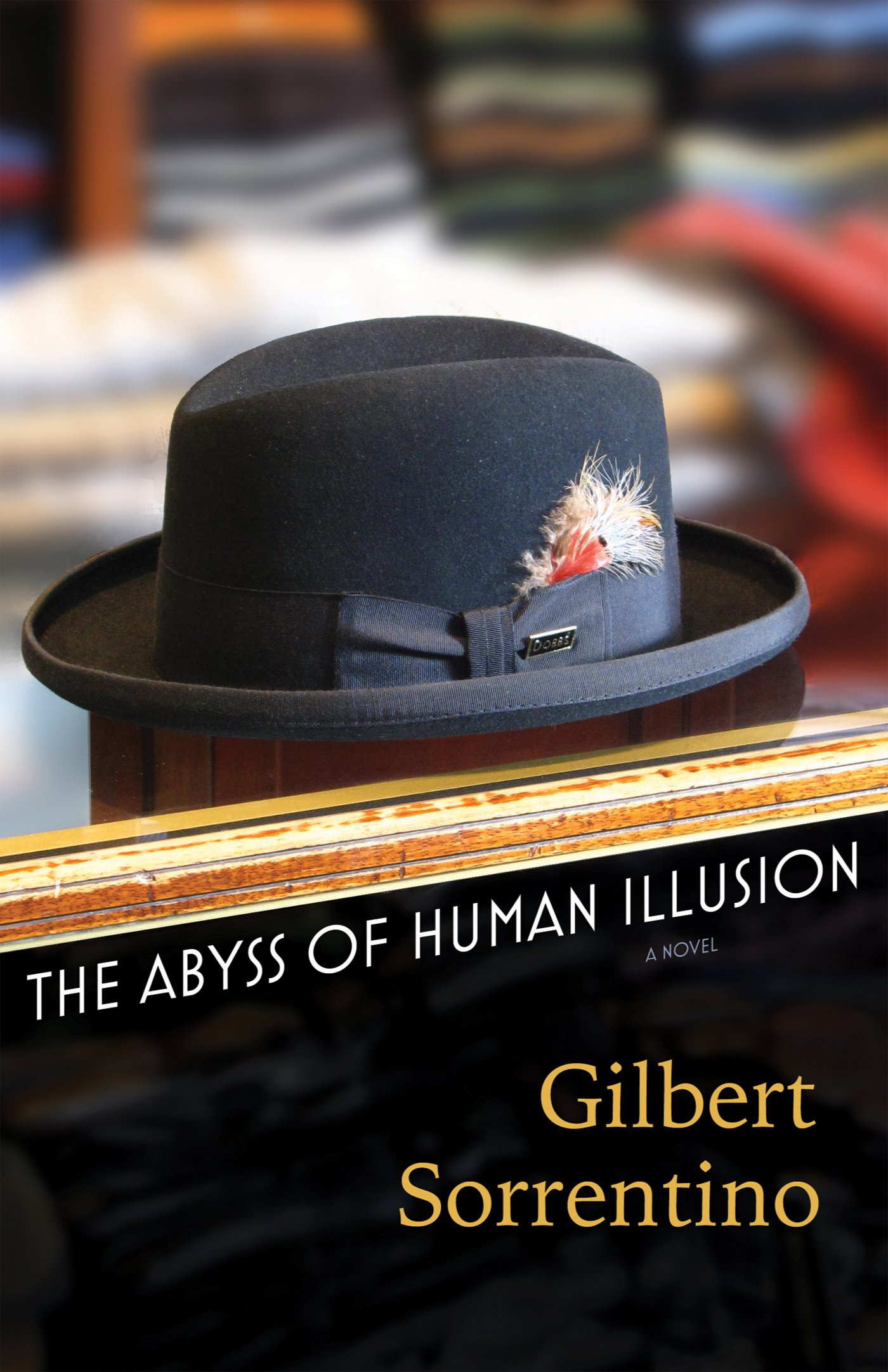 Abyss Human Illusion Gilbert Sorrentino product image