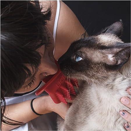 PDX Pet Design LICKI Brush