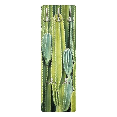 Cactus Appendiabiti.Bilderwelten Appendiabiti Cactus Wall Appendiabiti A Muro
